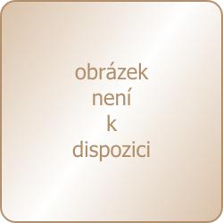Dámska erotická košieľka Hustler Lingerie 200HL264-WHT Lace and Mesh Mini Dress S