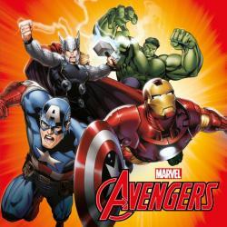 Dekoratívne Fotovankúšik Jerry Fabrics Avengers